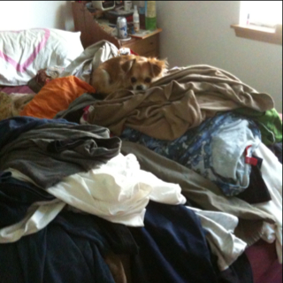 So Much Laundry for Little Ol' Me to Do